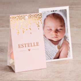 etui-dragees-naissance-rose-et-laurier-dore-TA749-001-09-1