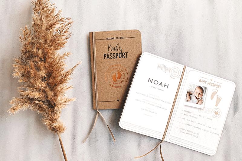faire part naissance format passeport